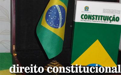 Artigos de Direito Constitucional