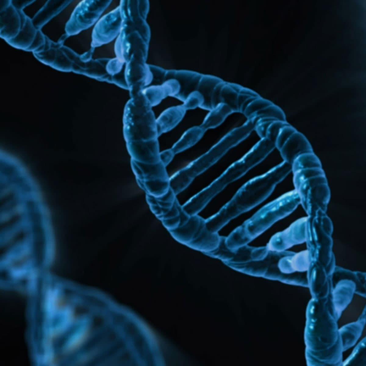 Biodireito e bioética: a luta pela preservação da vida humana