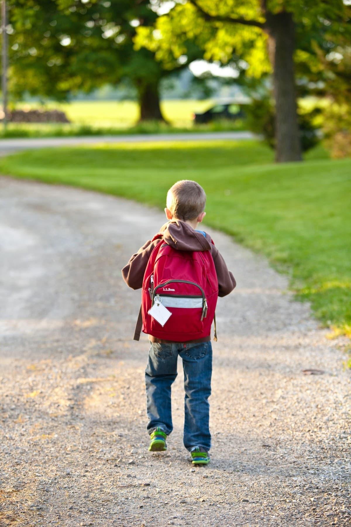 A importância do novo FUNDEB para a educação básica